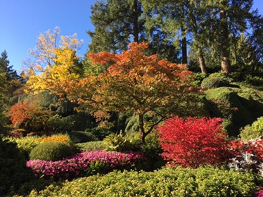 A warm autumn day at Butchart Gardens